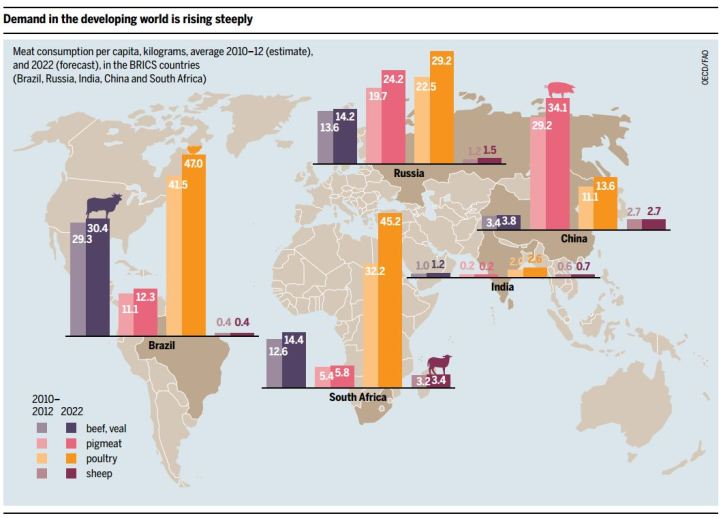 Developing world_Meat consumption